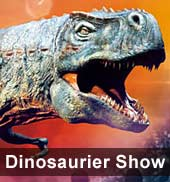 Dinosaurier Tour 2013