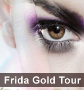 Frida Gold Tour 2011